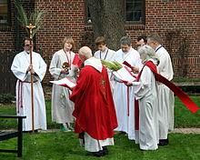 Many saved on Palm Sunday