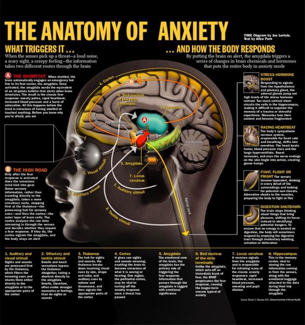 brain_stress