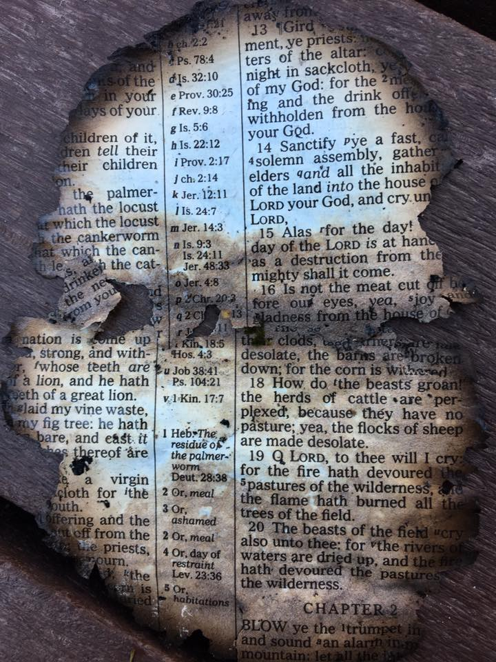 the-dollywood-bible
