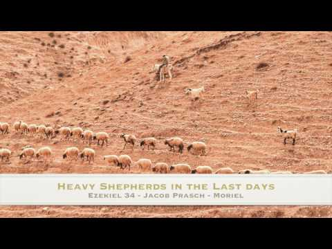 What were the theological problems of the Shepherding