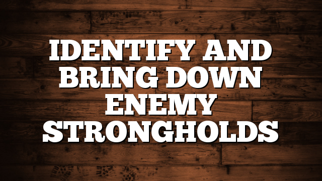IDENTIFY AND BRING DOWN ENEMY STRONGHOLDS