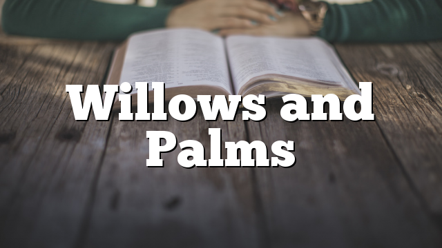 Willows and Palms