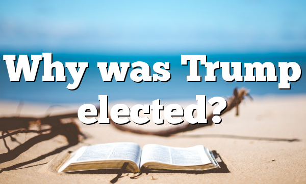 Why was Trump elected?