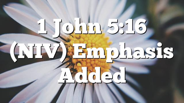 1 John 5:16 (NIV) Emphasis Added