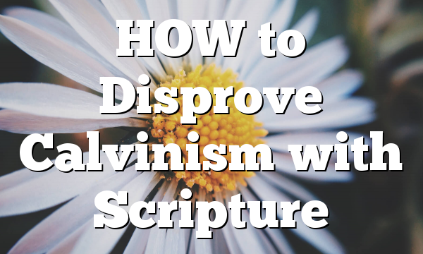 HOW to Disprove Calvinism with Scripture