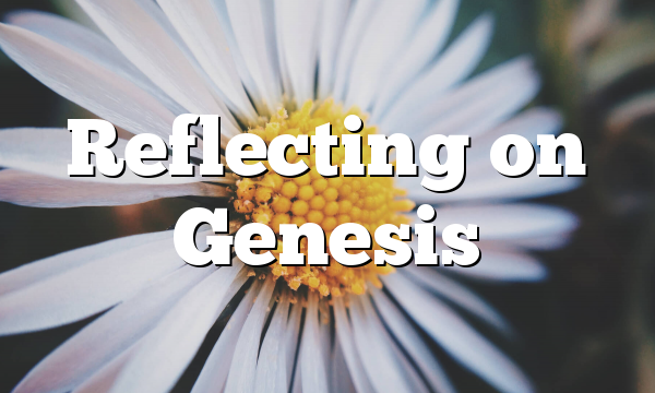 Reflecting on Genesis