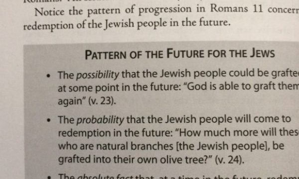 Dual-covenant patterns of the future of the JEWS