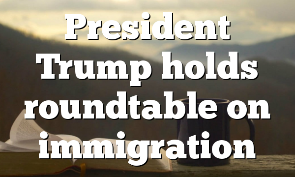 President   Trump holds roundtable on immigration