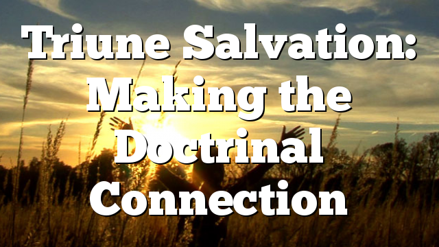 Triune Salvation: Making the Doctrinal Connection