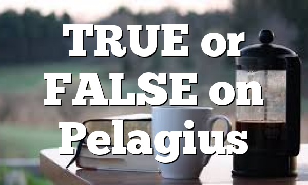 TRUE or FALSE on Pelagius