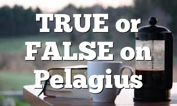 TRUE or FALSE on Pelagius
