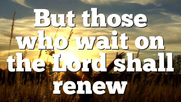 But those who wait on the Lord shall renew