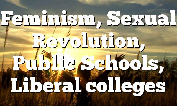 Feminism, Sexual Revolution, Public Schools, Liberal colleges