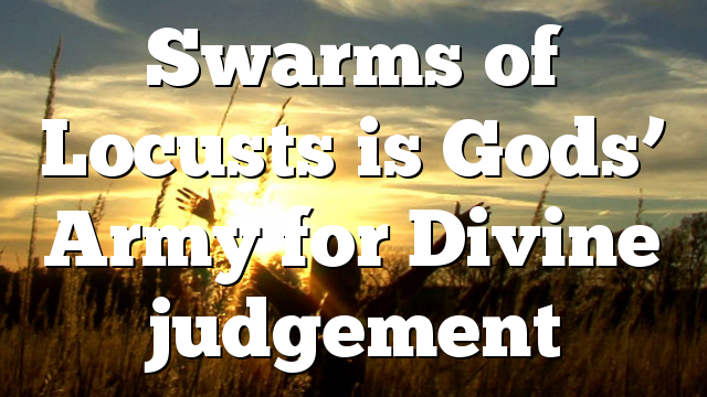 Swarms of Locusts is Gods' Army for Divine judgement