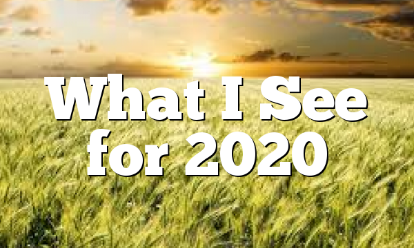 What I See for 2020