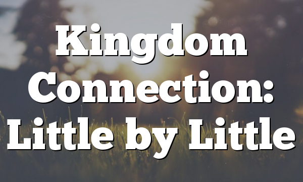 Kingdom Connection: Little by Little