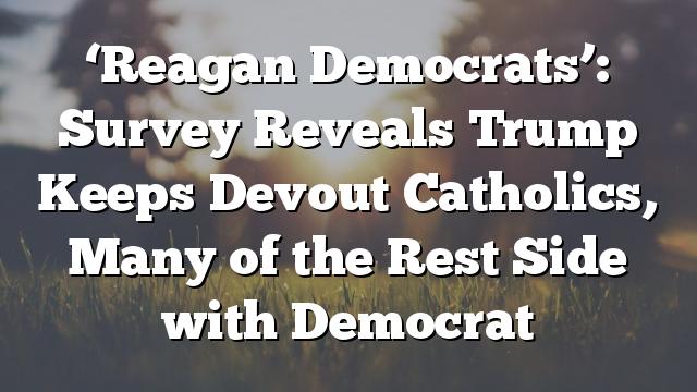 'Reagan Democrats': Survey Reveals Trump Keeps Devout Catholics, Many of the Rest Side with Democrat