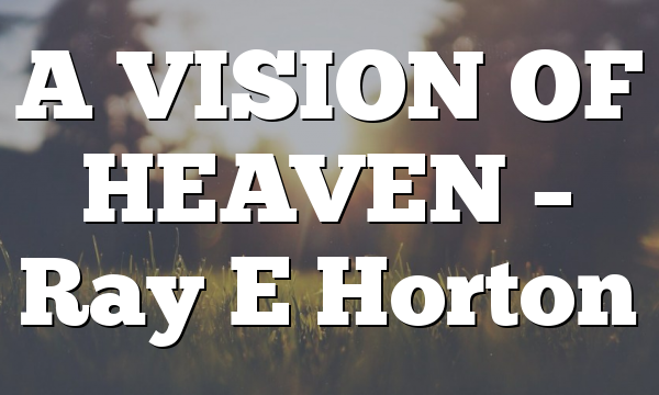 A VISION OF HEAVEN – Ray E Horton