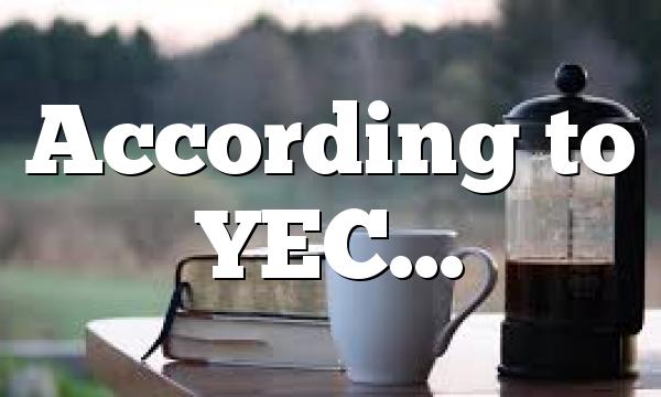 According to YEC…