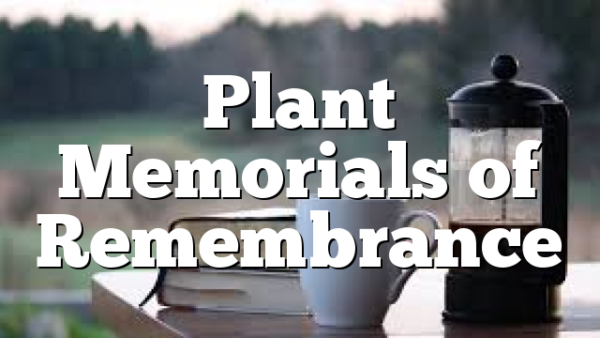 Plant Memorials of Remembrance