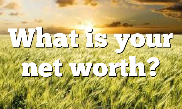 What is your net worth?