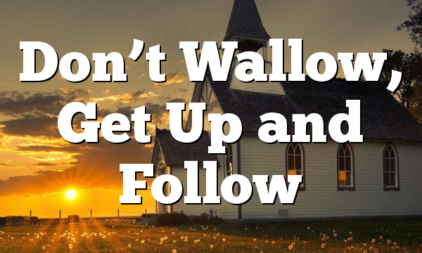 Don't Wallow, Get Up and Follow
