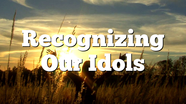 Recognizing Our Idols