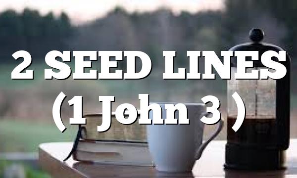 2 SEED LINES (1 John 3 )