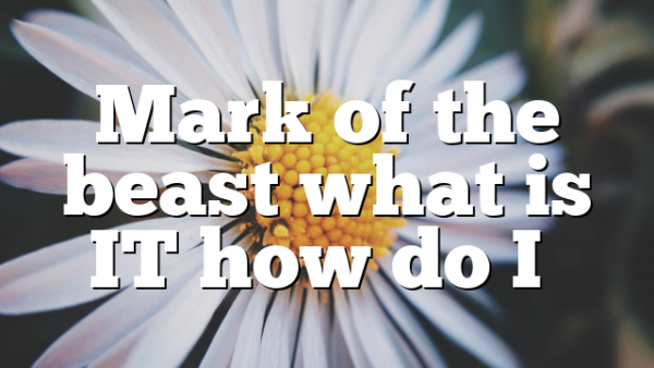 Mark of the beast what is IT how do I…