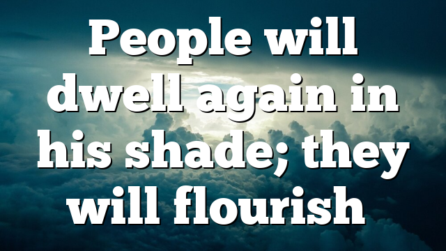 People will dwell again in his shade; they will flourish…