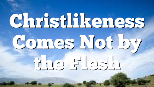 Christlikeness Comes Not by the Flesh
