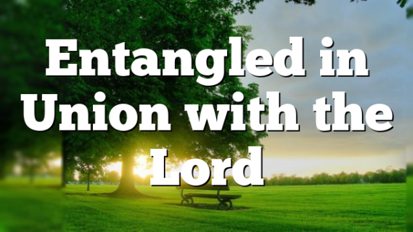 Entangled in Union with the Lord
