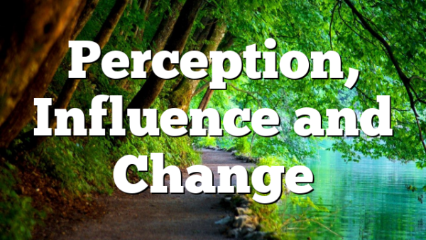 Perception, Influence and Change