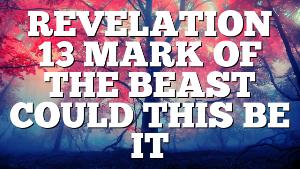 REVELATION 13  MARK OF THE BEAST COULD THIS BE IT