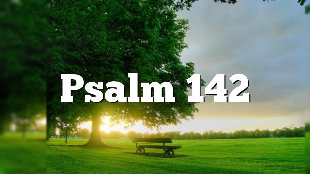 Psalm 142