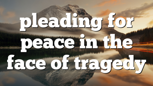 pleading for peace in the face of tragedy