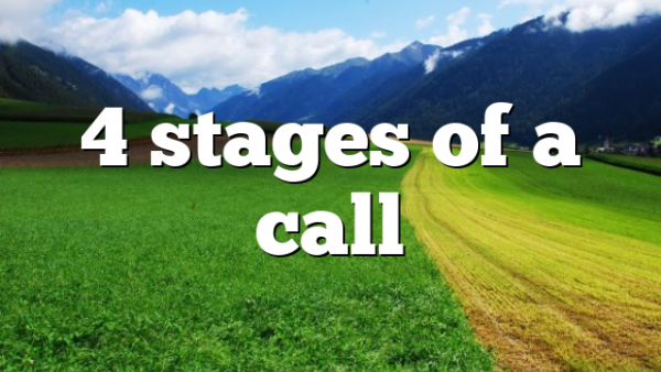 4 stages of a call
