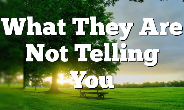 What They Are Not Telling You
